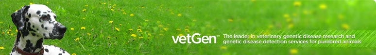 VetGen - The leader in veterinary genetic disease research and genetic disease detection services for purebred animals